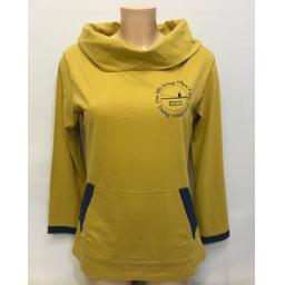 saltwash yellow (2).jpg